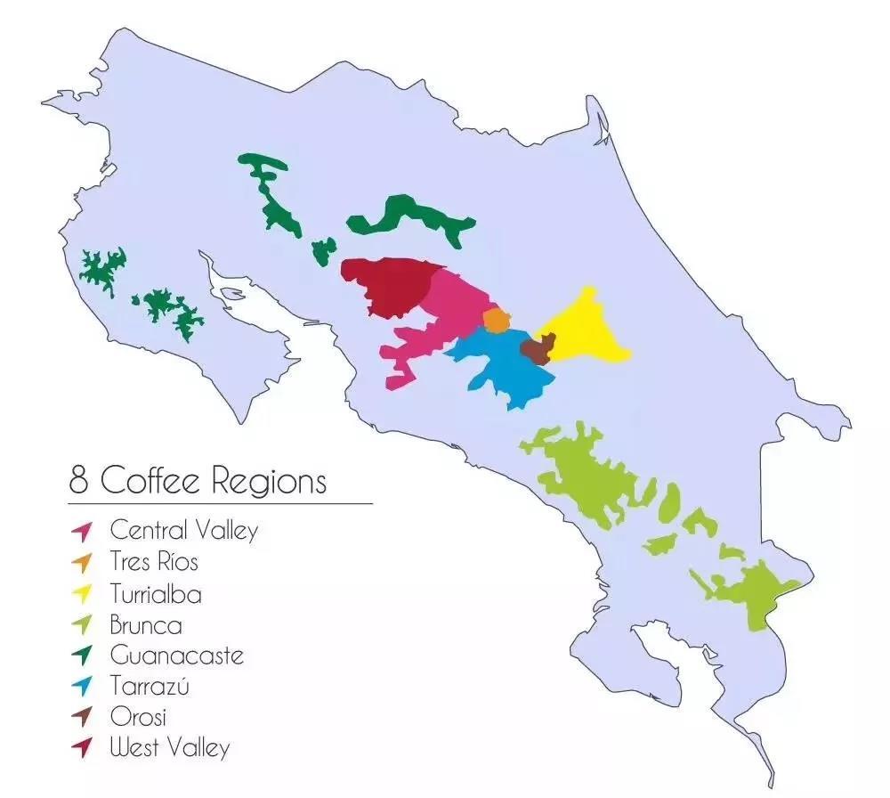 Costa Rican Coffee Areas